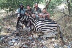 Zebra-53