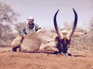 Waterbuck Hunting