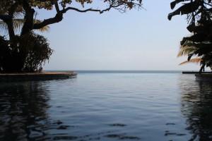 dugong pool