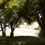 Malipati Hunting Camp