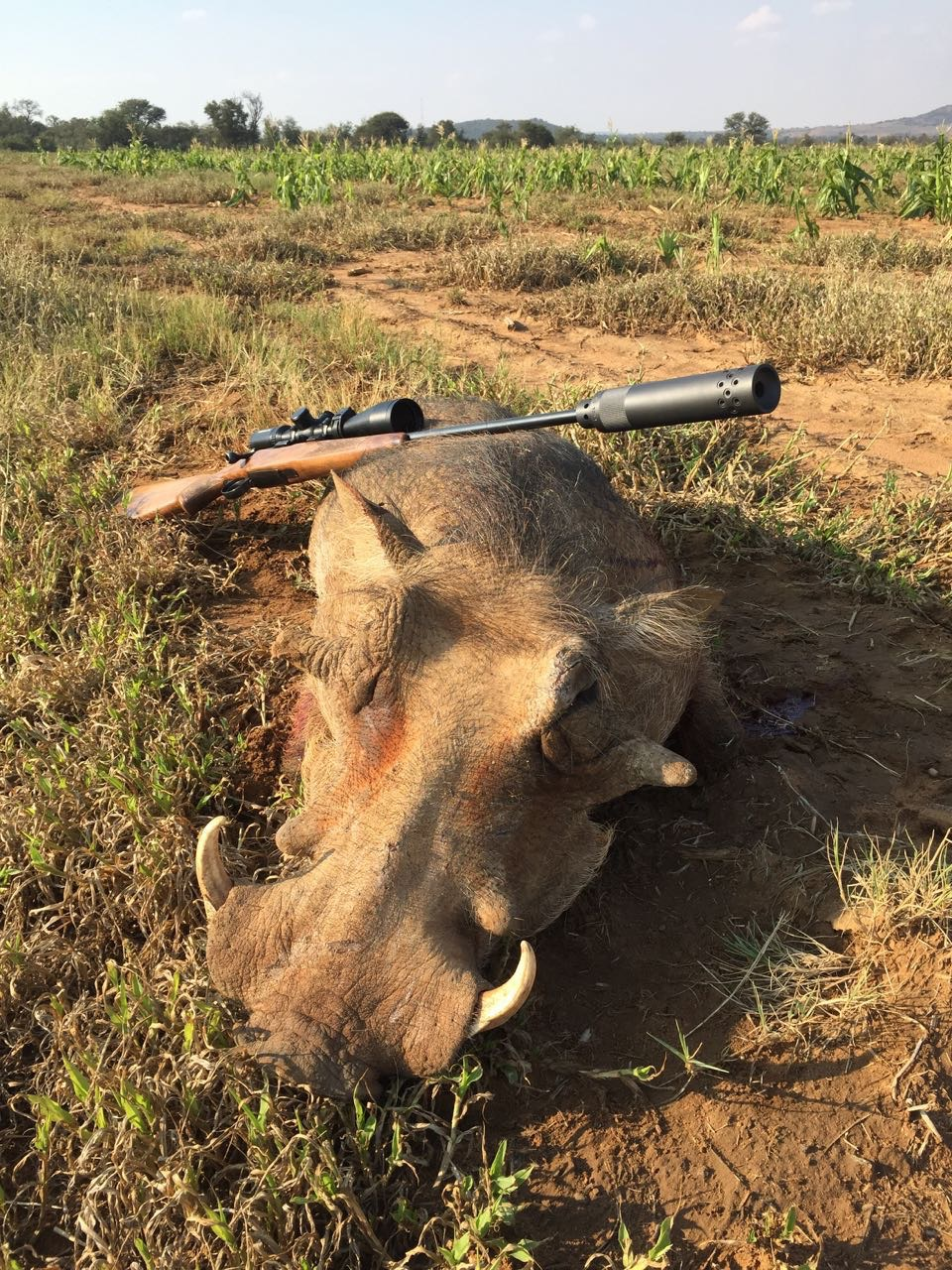warthog with 223 front