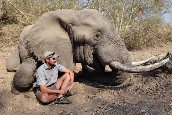 Elephant Hunting