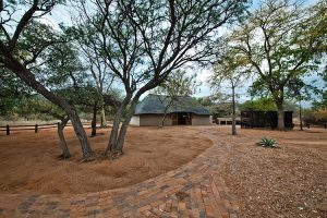 Serengeti Bush Camp