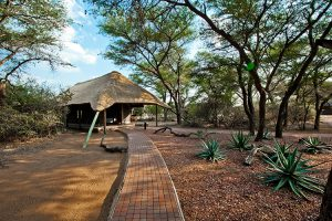 Serengeti Main Lodge