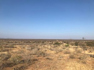 JWK Safaris Otjiwarongo