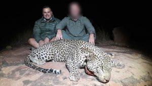 Otjiwarongo Leopard