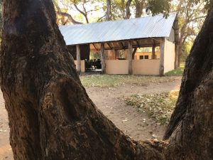 Sengwe 1 Hunting Camp