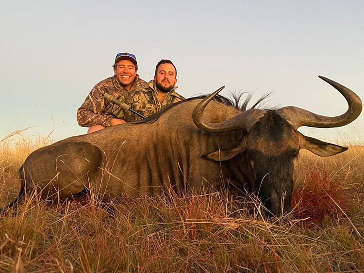 Blue Wildebeest Hunting Gallery