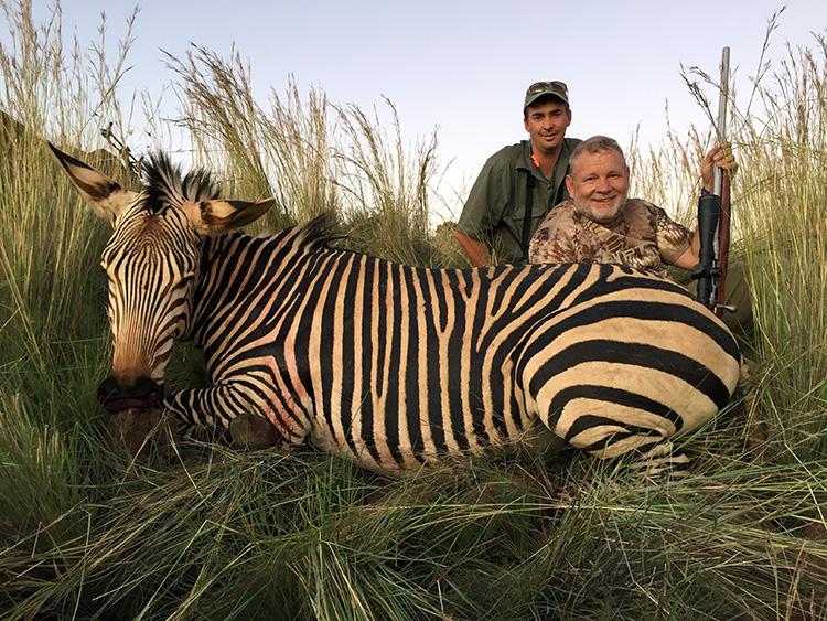 Zebra Hunting Gallery